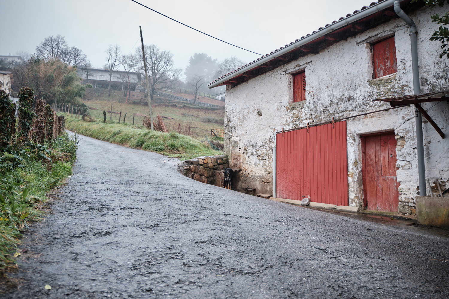A basque traditional and old farm house with a red door and a dog.