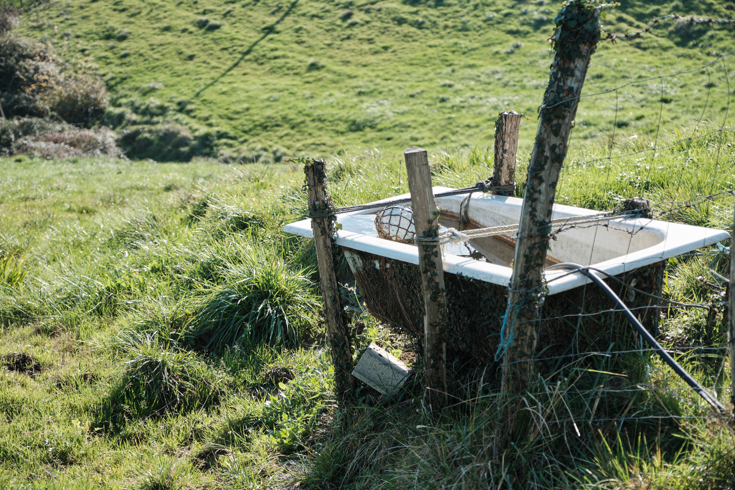 A bath use to collect water in a grass field.
