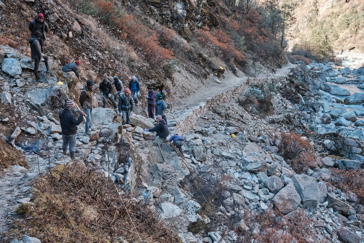 A group of people building a stone path in a rural area.