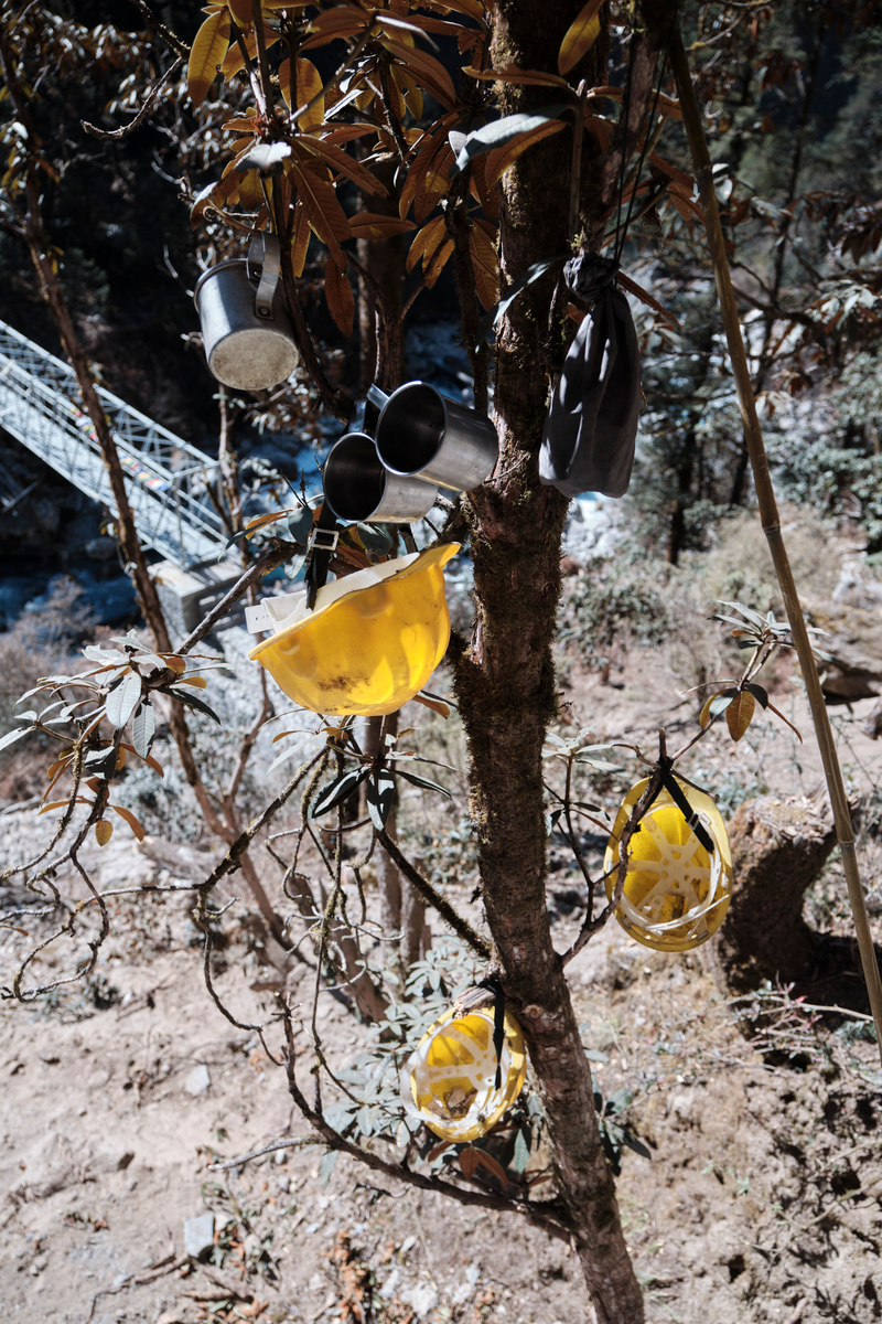 Plastic working helmets and metal cups hanging from a tree.
